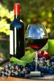 Vidrio de vino rojo con la botella y las uvas Foto de archivo libre de regalías