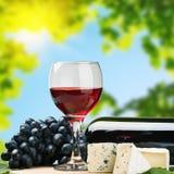 Vidrio de vino rojo con las uvas Imagen de archivo