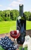 Vidrio de vino rojo con las uvas Foto de archivo