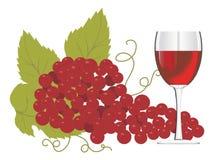 Vidrio de vino rojo con un manojo de uvas stock de ilustración