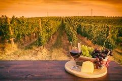 Vidrio de vino rojo delante de un viñedo en la puesta del sol Fotos de archivo