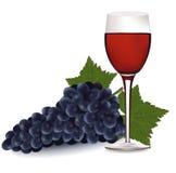 Vidrio de vino rojo y uvas. Imágenes de archivo libres de regalías
