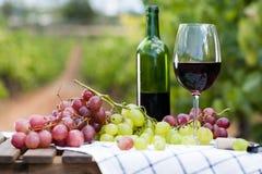 Vidrio de vino rojo y de uvas maduras en la tabla Fotografía de archivo