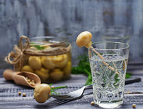Vidrio de vodka rusa y de las setas conservadas en vinagre Imagen de archivo libre de regalías