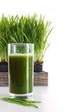 Vidrio de wheatgrass en blanco