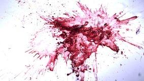 Vidrio de Wibe rojo que cae, rompiéndose y salpicando contra el fondo blanco,