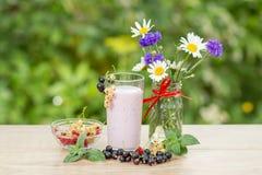 Vidrio de yogur de la pasa con las bayas frescas del rojo, del negro y del wh Foto de archivo