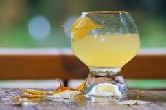 Vidrio de zumo de manzana Imágenes de archivo libres de regalías