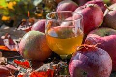 Vidrio de zumo de manzana y de manzanas frescas con las hojas de otoño en la frontera de piedra Imagen de archivo