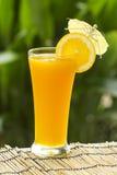 Vidrio de zumo de naranja Imagen de archivo libre de regalías