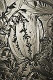 Vidrio decorativo Imagen de archivo libre de regalías