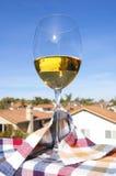 Vidrio del vino blanco y de una opinión meridional de California Imagen de archivo