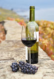 Vidrio del vino rojo y de una botella en la terraza del viñedo en el servicio Imagenes de archivo