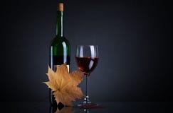 Vidrio del vino y de la botella de vino Fotos de archivo