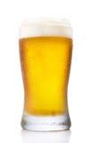 Vidrio escarchado de la pinta de cerveza fotografía de archivo