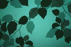 Vidrio esmerilado Imagen de archivo libre de regalías
