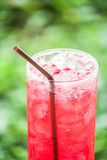 Vidrio fresco de la bebida roja Imágenes de archivo libres de regalías
