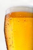 Vidrio lleno de cerveza Imágenes de archivo libres de regalías
