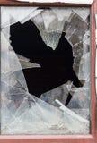 Vidrio quebrado en la ventana imagen de archivo libre de regalías