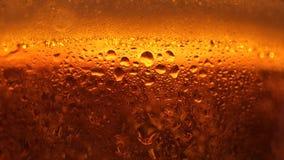 Vidrio transparente del primer extremo lleno de cerveza fresca del arte con el levantamiento para arriba slowmo de las burbujas d almacen de metraje de vídeo