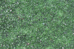 Vidrio verde Foto de archivo libre de regalías