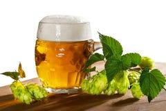 Vidrio y saltos de cerveza Imagenes de archivo