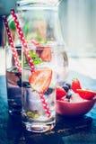 Vidrios con agua, las bayas y los cubos de hielo infundidos Fotografía de archivo libre de regalías