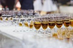 Vidrios con el jugo, vidrios del champán, vidrios con el vino, caterin Fotos de archivo