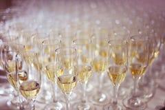 Vidrios con el vino Imagen de archivo libre de regalías
