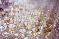 Vidrios con el vino Fotografía de archivo libre de regalías