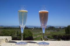 Vidrios con el vino espumoso Fotografía de archivo