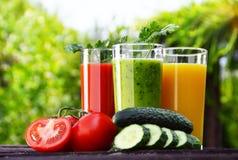 Vidrios con los jugos de las verduras frescas en el jardín Dieta del Detox Foto de archivo