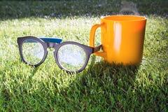 Vidrios de café y vidrios en hierba verde por la mañana Foto de archivo libre de regalías