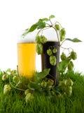 Vidrios de cerveza en la hierba. Imagen de archivo libre de regalías