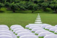 Vidrios de Champán de la boda Foto de archivo libre de regalías