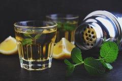 Vidrios de la bebida alcohólica con el limón Fotografía de archivo