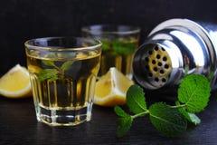 Vidrios de la bebida alcohólica con el limón Foto de archivo libre de regalías