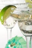 Vidrios de Martini con los cocteles Fotografía de archivo libre de regalías