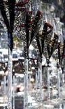 Vidrios de vino únicos fijados Foto de archivo libre de regalías