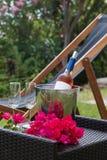 Vidrios de vino con la botella del vino rosado con el fondo del jardín Fotografía de archivo