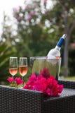 Vidrios de vino con la botella del vino rosado con el fondo del jardín Foto de archivo libre de regalías