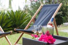 Vidrios de vino con la botella del vino rosado con el fondo del jardín Fotos de archivo libres de regalías