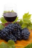 Vidrios de vino y de uvas en blanco Imagen de archivo