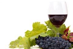 Vidrios de vino y de uvas en blanco Fotografía de archivo