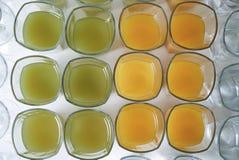 Vidrios de zumo de fruta fresco sabroso de la naranja y de kiwi, en el escritorio blanco Fotografía de archivo libre de regalías