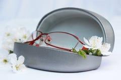Vidrios del ojo con las flores del blosson de la cereza imágenes de archivo libres de regalías