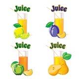 Vidrios para el jugo del limón, de la manzana, de la pera y del ciruelo Imagen de archivo libre de regalías