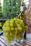 Vidrios por completo de uvas y de una botella de vino Imagenes de archivo