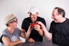 3 vidrios que tintinean de las personas Imagenes de archivo