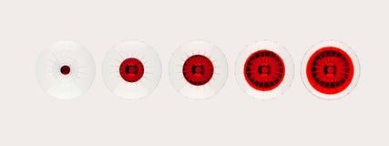 Vidrios rojos de martini desde arriba Imágenes de archivo libres de regalías